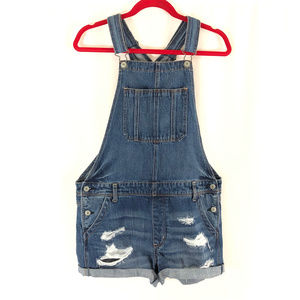 American Eagle Womens Denim Tomgirl Overalls